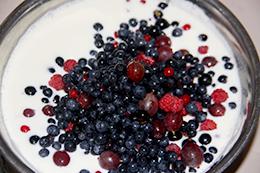 Сметанное желе с ягодами как приготовить фото