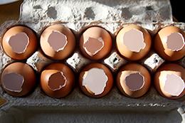 заливные яйца, как приготовить фото